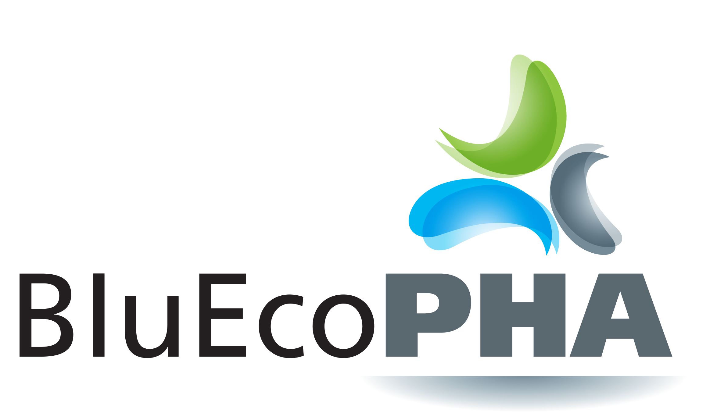 Launch of the Bluecopha project